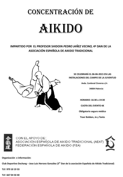 CONCENTRACIÓN AIKIDO 06-06-15